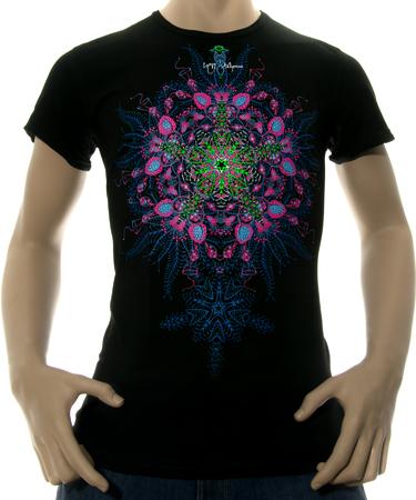 На фото изображено Мужская футболка Biorganica черная