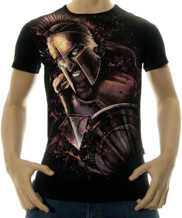 На фото изображено Мужская футболка Veni vidi vici черная