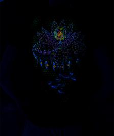 На фото изображено Mechanical Lotus