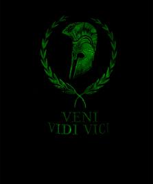 На фото изображено Veni vidi vici