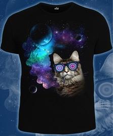 На фото изображено Космический Кот